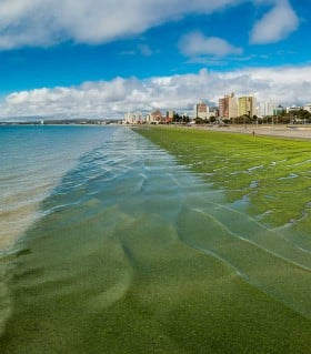 Colourful beach in Puerto Madryn Argentina