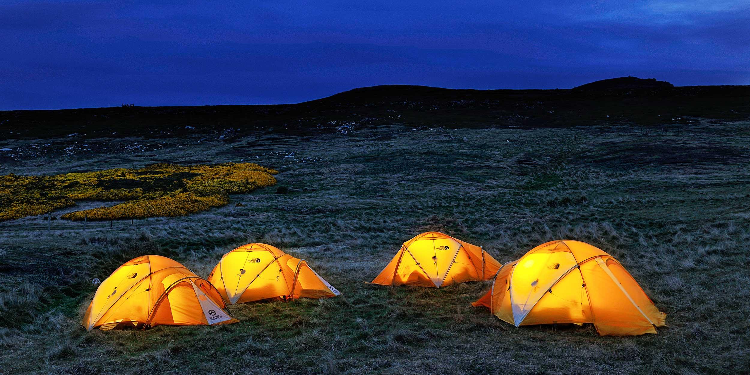 C&ing on Falkland Islands & Antarctica Excursions - Falkland Islands | Hurtigruten UK | Hurtigruten