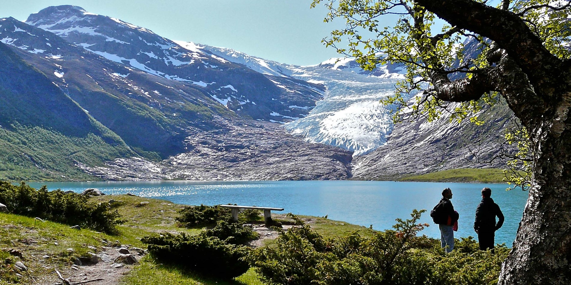 Svartisen Glacier across the lake