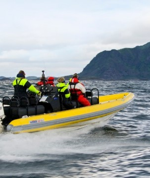 If you want more of an adrenaline rush, join one of our excursions by RIB through the Lofoten islands.